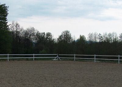 Pvc horse fence 3